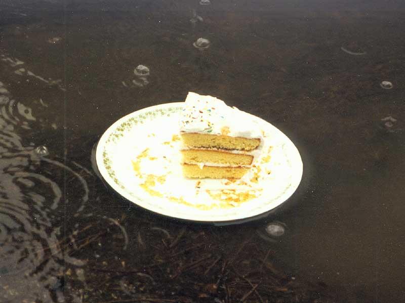 cake-lg.jpg